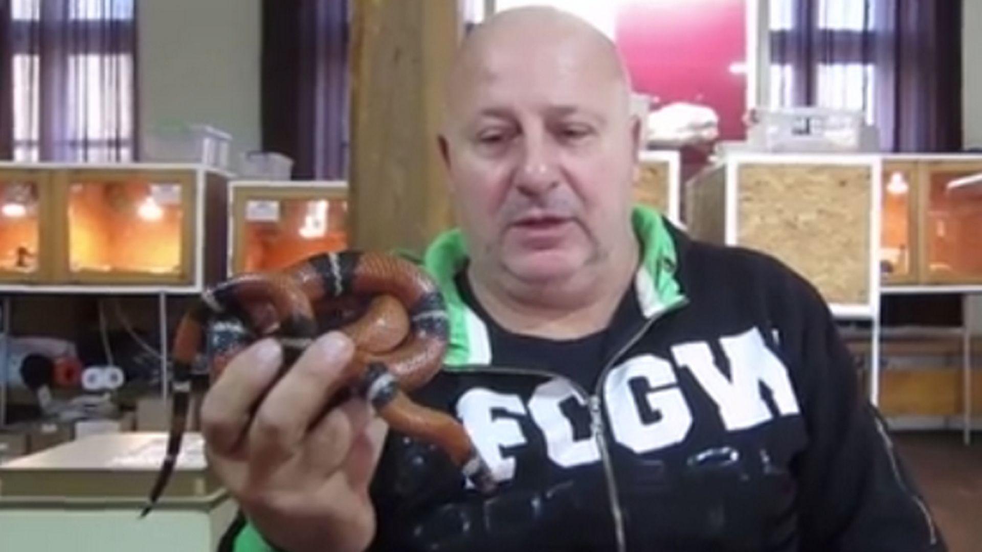 Черна мамба ухапа най-известния ветеринар, занимаващ се със змии