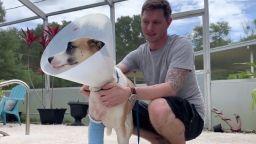Стопанин спаси кучето си след ръкопашна схватка с алигатор (видео)