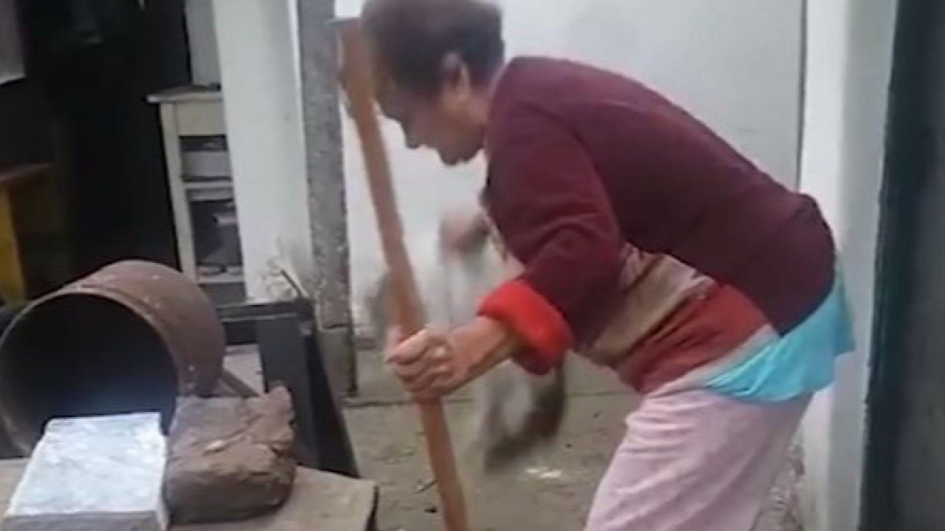 Повдигнаха обвинения на бабата и дядото, които убиха котка