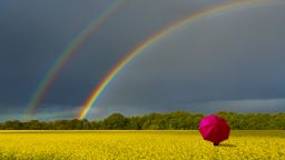 Още дъждове  и гръмотевици, повече слънце - в неделя и понеделник