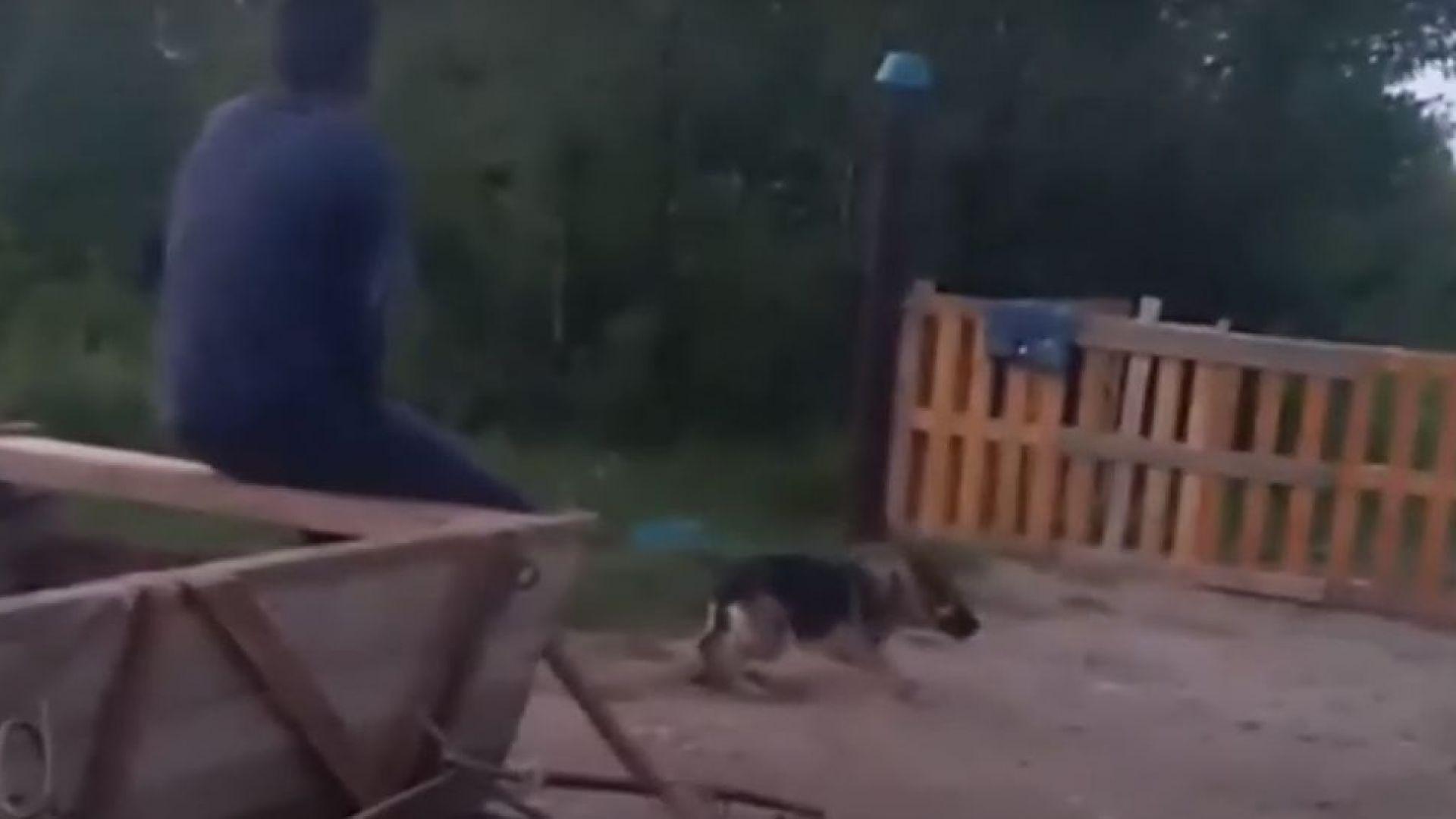 Дете впрегна куче да дърпа каруца и го преби с лопата (ВИДЕО)