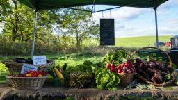 """ДФ """"Земеделие"""" плати 42.4 млн. на биопроизводители и обяви подкрепа за лозари"""