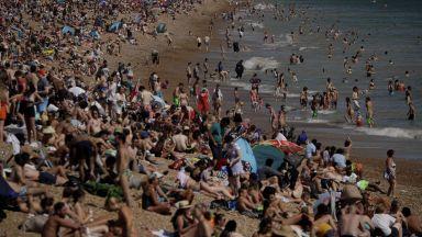 СЗО: Все повече млади заразени с коронавирус след отваряне на барове и плажове