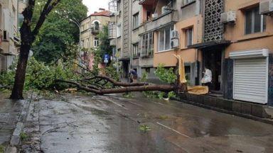 Мощна буря с пороен дъжд и ураганен вятър удари Варна (видео)