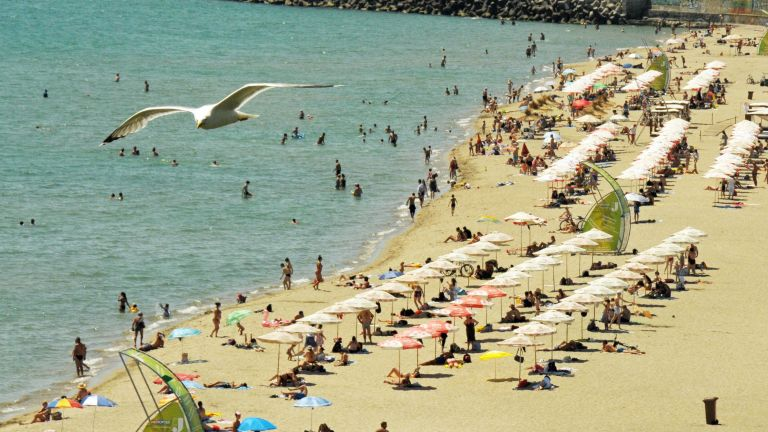 20 водолази чистят морското дъно край централния плаж в Бургас