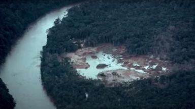 Най-големите пожари от 13 години в амазонската гора (видео)