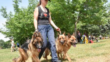Летният фестивал на София започва на 15 юли под открито небе