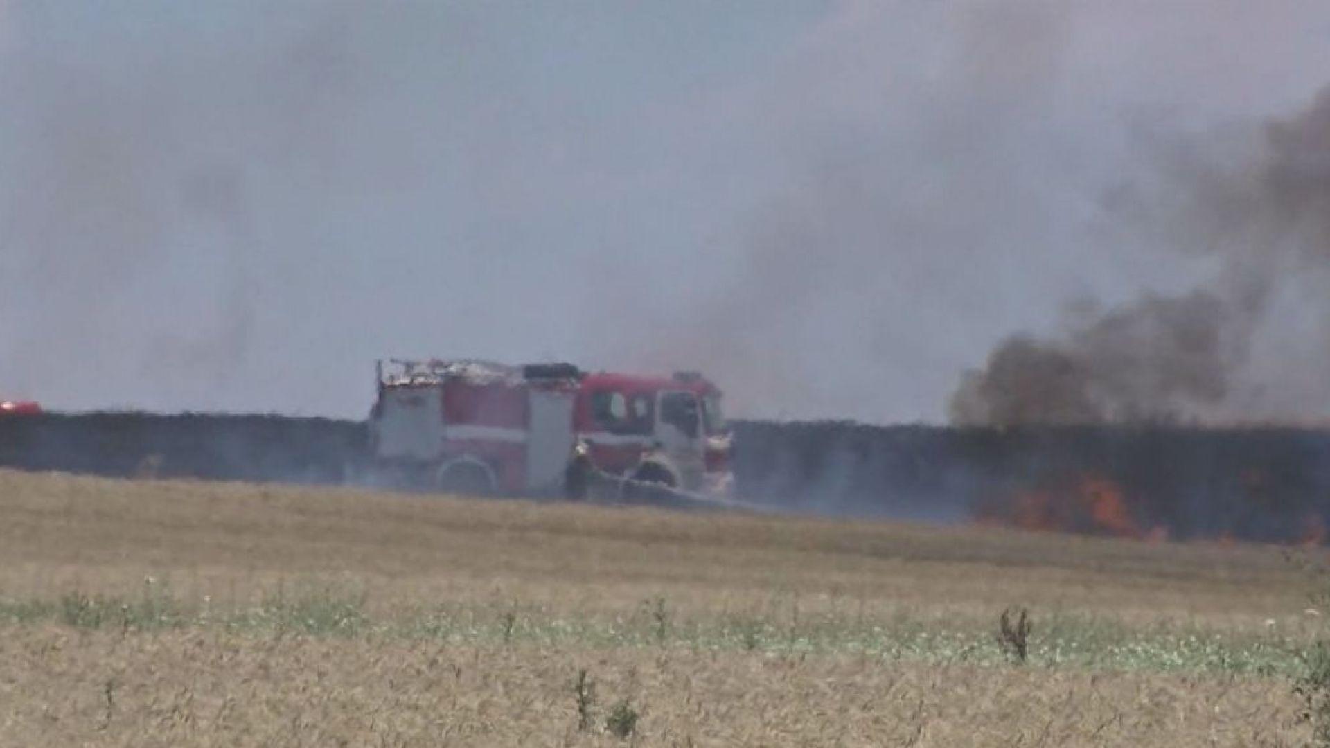 Стотици декари реколта изгоряха заради неизправна стопанска техника