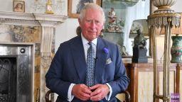 Борис Джносън и принц Чарлз благодариха на лекарите: Вие бяхте нашият щит!