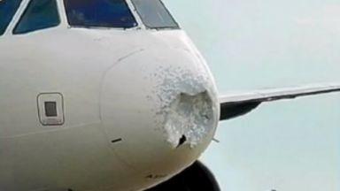 Самолет се сблъска с ято птици и кацна аварийно в Ню Йорк
