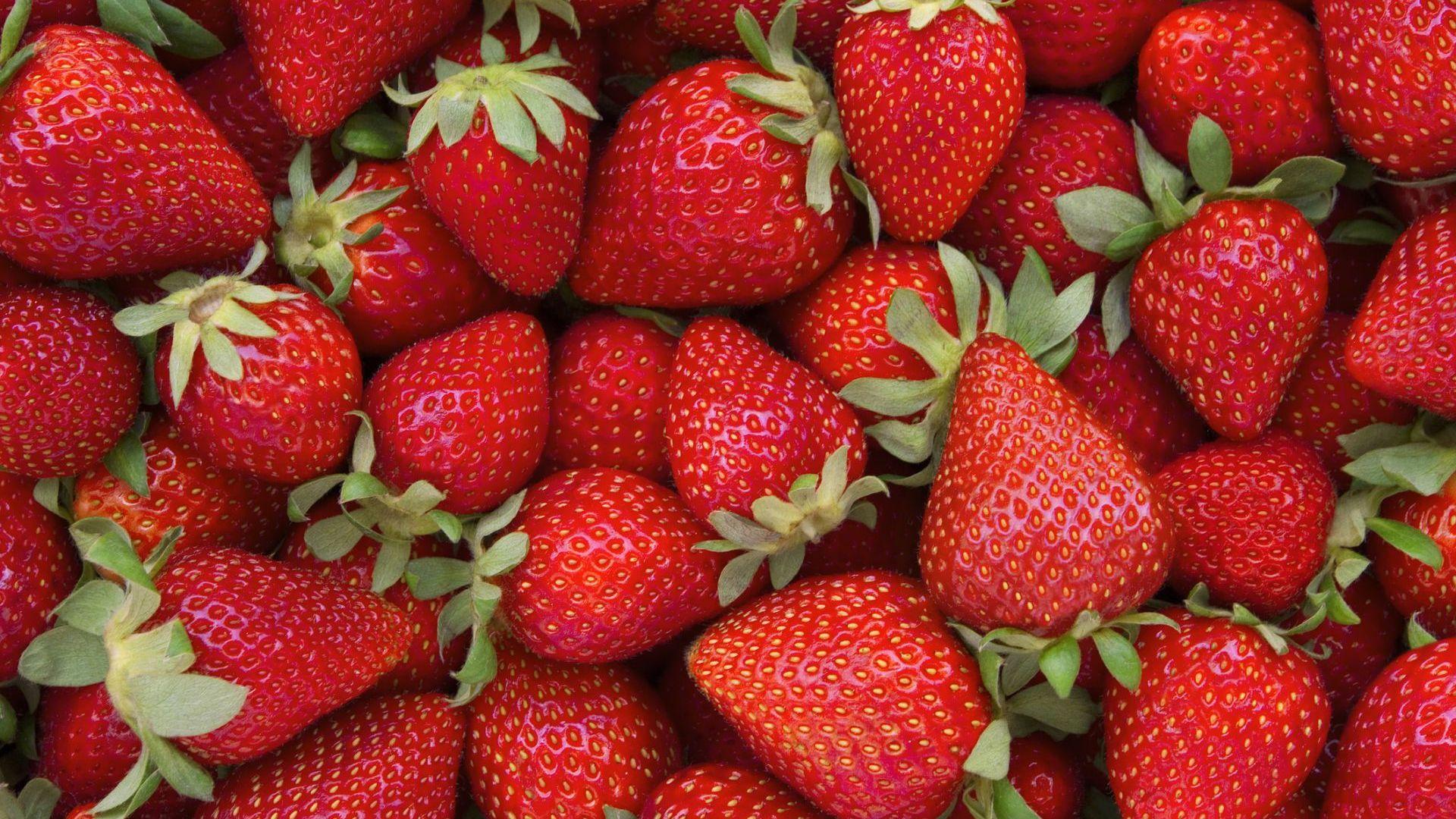 Безработните финландци берат ягоди по време на пандемията