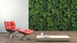 Инвестирайте в своя по-зелен град и по-комфортен дом