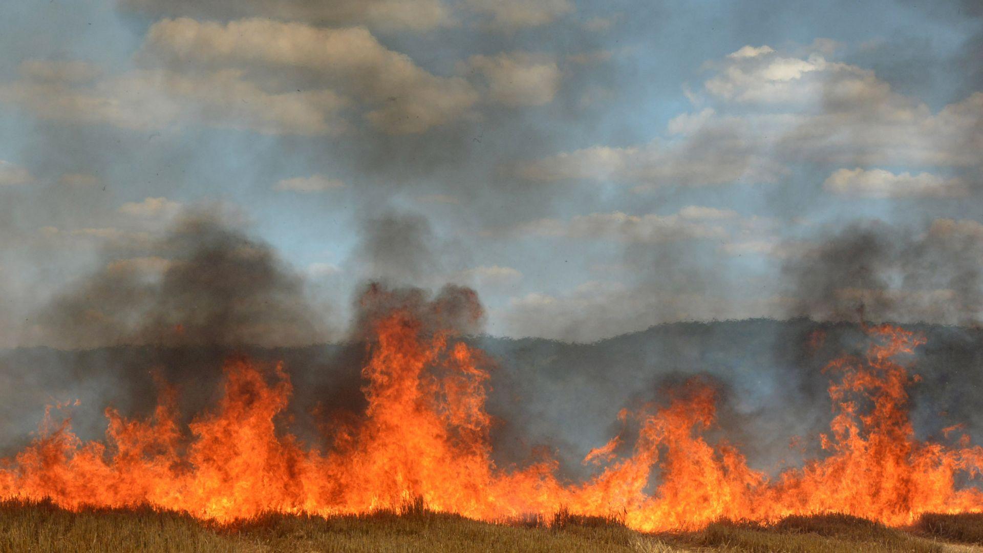 """Пламнаха треви и храсти край автомагистрала """"Марица"""""""