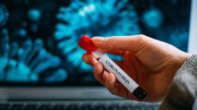 216 нови случаи на коронавирус, 11 са починалите
