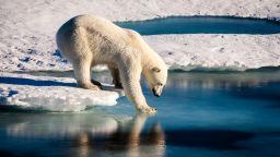 Учени прогнозират, че забавянето на глобалното затопляне е възможно