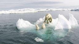Арктика може  да остане без лед  до 2035 г.