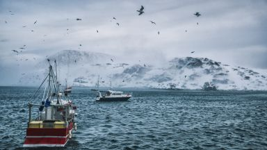 Леденият шелф  на антарктически ледник  се топи все по-бързо