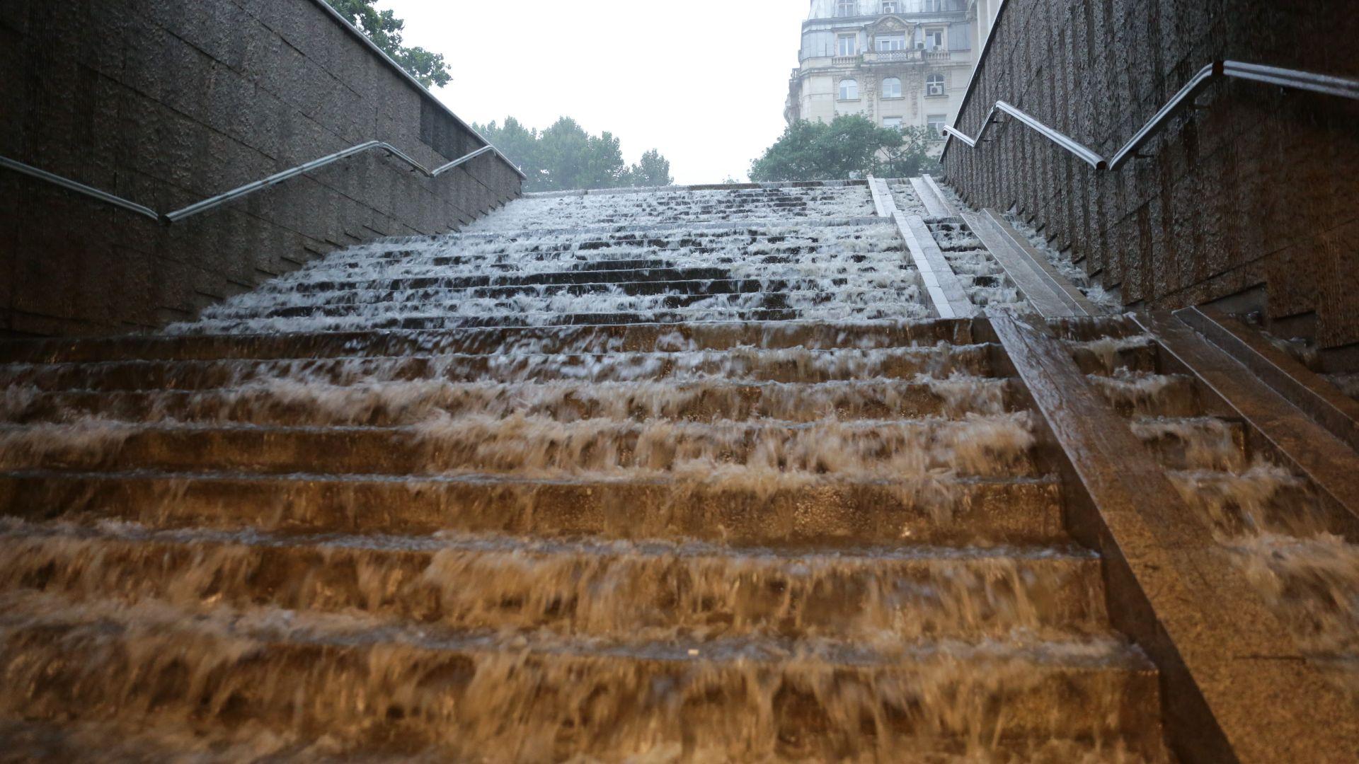 Буря и мощен порой в София, има паднали дървета (снимки, видео)