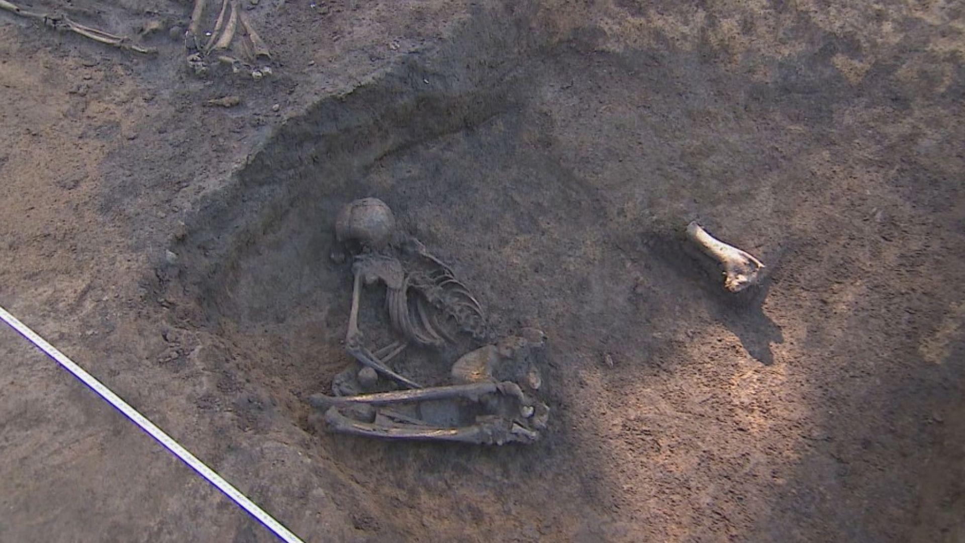 """Нови находки на 8000 г. в неолитното селище в """"Слатина"""""""