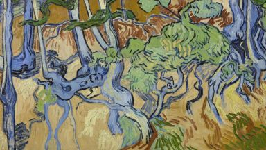 Oткриха мястото, където Ван Гог е нарисувал последната си картина