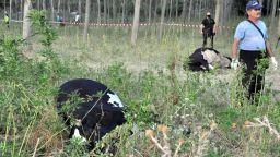 Пробите показват, че кравите, пили от Марица, са отровени