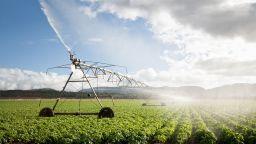 МОСВ: Нивото на язовирите започна да пада, пестете водата