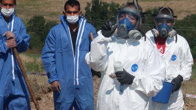 Ударно събират загробените пестици през 90-те г., откриха близо 20 т в Плевенско (снимки и видео)