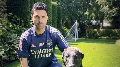 Куче за 20 000 паунда ще пази дома на треньора на Арсенал
