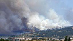 Над 1000 декара гора пламна край Шумен