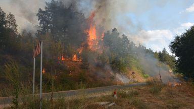 Бедствено положение в община Свиленград заради огнената стихия