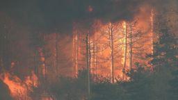 36 пожара се локализират и гасят в страната