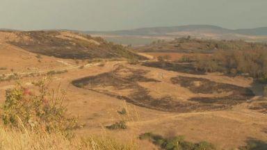 Сакар след пожара - десетки обгорели животни и 4000 декара унищожена гора