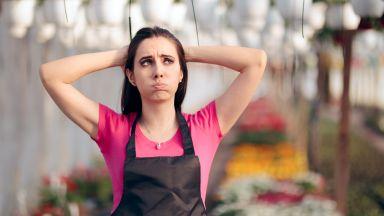 73% готови да сменят работата си за по-висока заплата