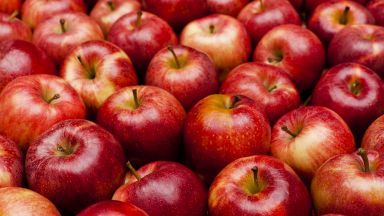Инфлацията до края на септември е -1.1%: как са се променили цените