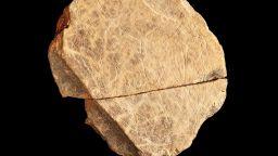 Откриха най-древните скални рисунки във Великобритания