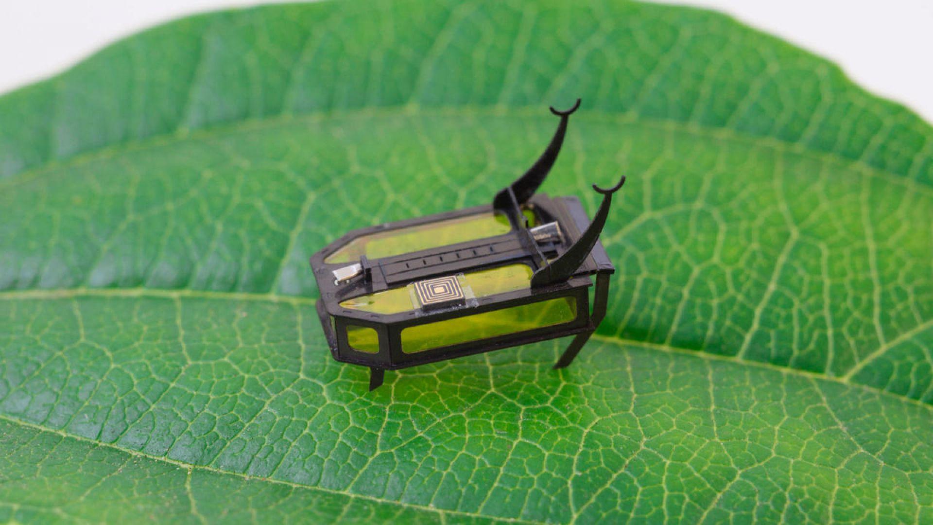 Бръмбар-робот се движи без батерия