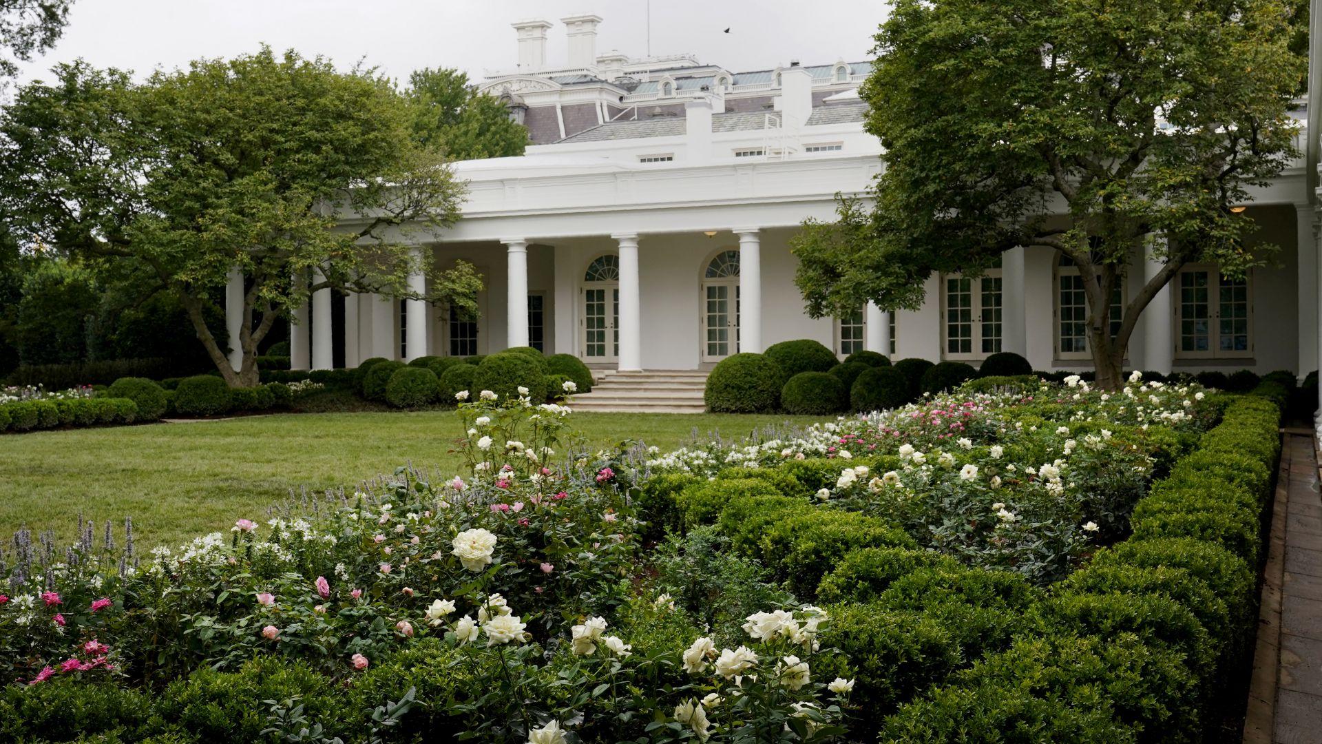 Mелания Tръмп обнови розовата градина на Белия дом (снимки)