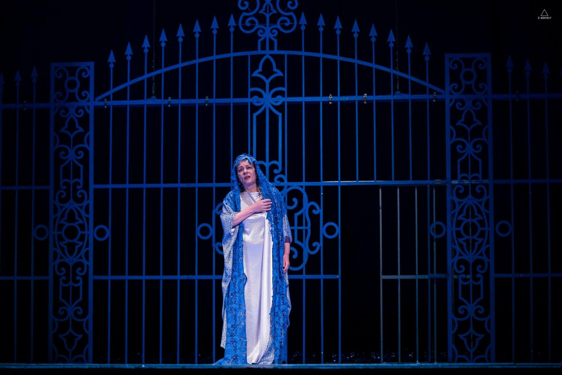 """Портата от представлението """"Синята птица"""", където Андреа е асистент-сценограф на Никола Тороманов  Фотограф:  3 i n S p i r i t"""