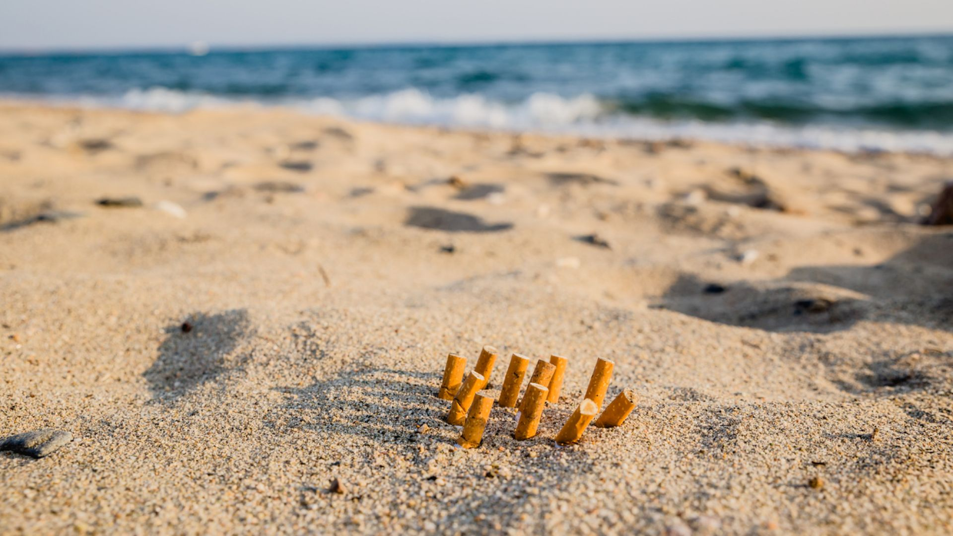 Морски рак, който пуши цигара, се превърна в сензация в социалните мрежи (видео)
