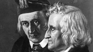 Братя Грим са били не двама, а петима