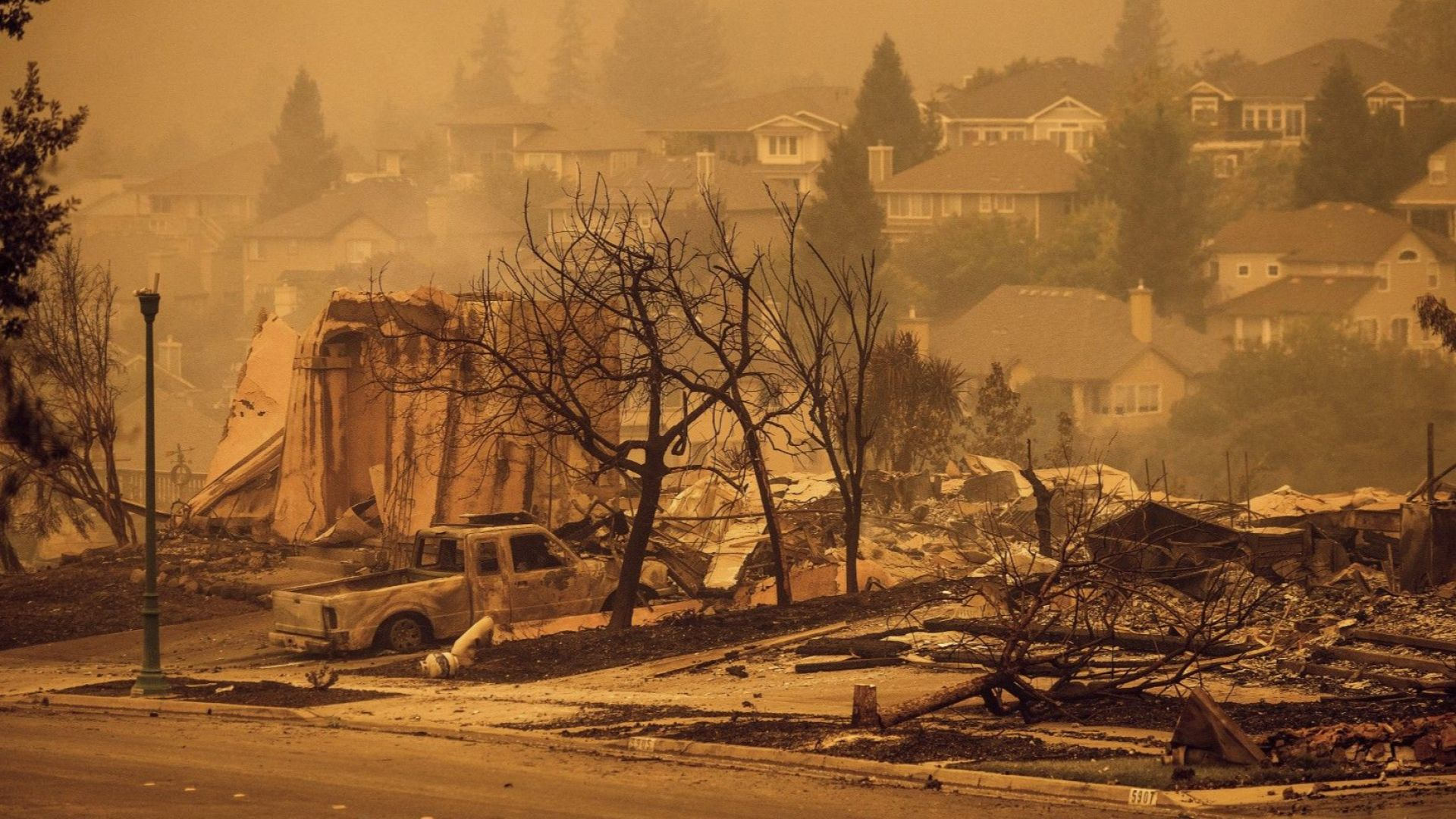 """""""Стъклен огън"""" изпепели близо 14 000 хектара лозя в в долината Напа"""