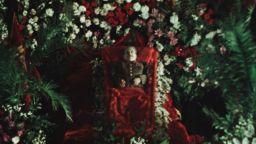 """""""Държавно погребение"""" - драматичното и абсурдно значение на живота и смъртта по време на режима на Сталин"""