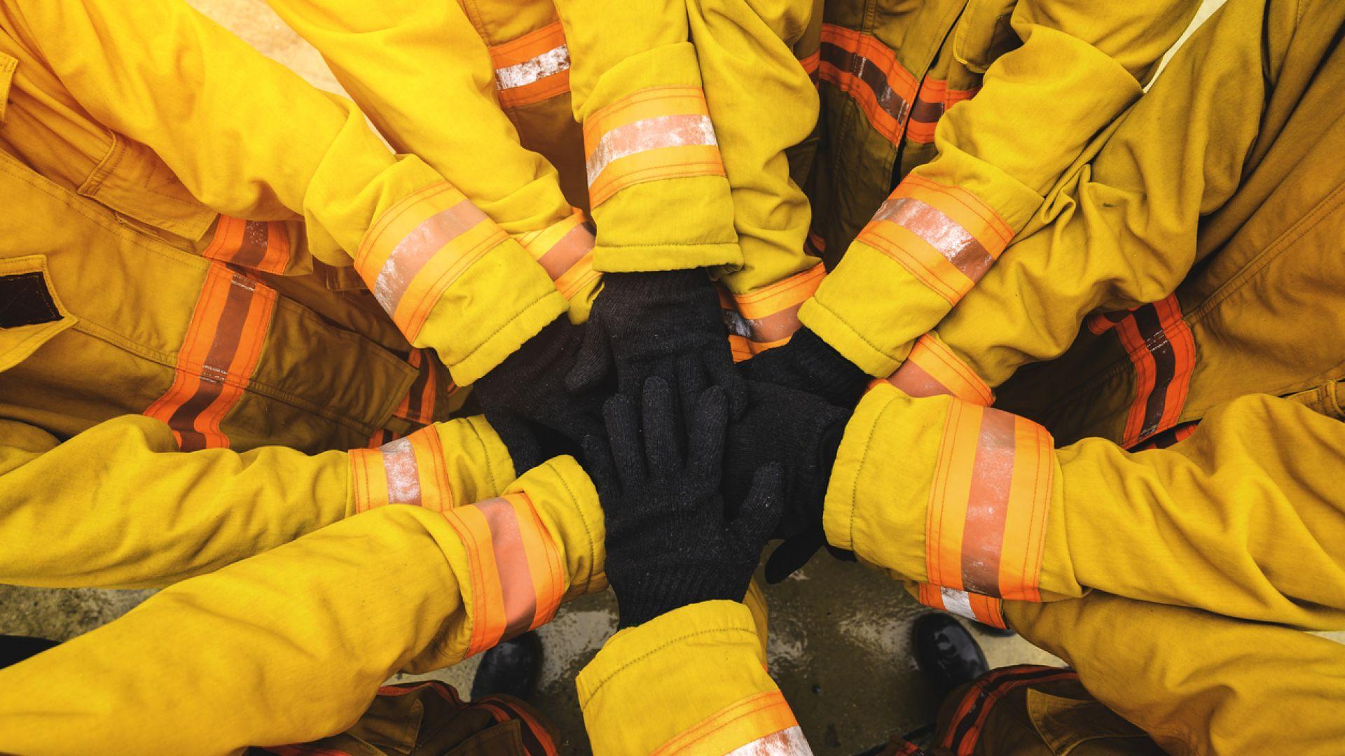Пожарникари в спасителна акция на куче, което се оказа жаба