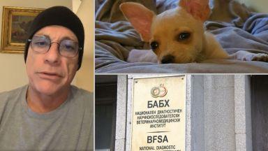 Глобяват ветеринаря, помогнал нелегално за извеждането на кучето Рая в Норвегия
