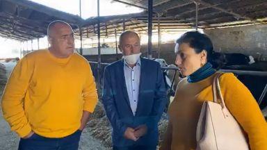 Борисов в голяма кравеферма: Навремето как с Белчо и Сивушка са орали, а сега какви неща има!