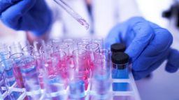Учени разработиха метод за откриване на токсин в ядки и млечни продукти