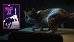 Краставица е злодеят в първия филм на ужасите за котки (видео)