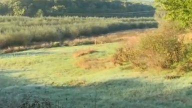 Буйна гора e заличила пълноводен язовир край Русе