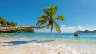 Бермуда кани: Ако работите от вкъщи, елате тук за 1 година