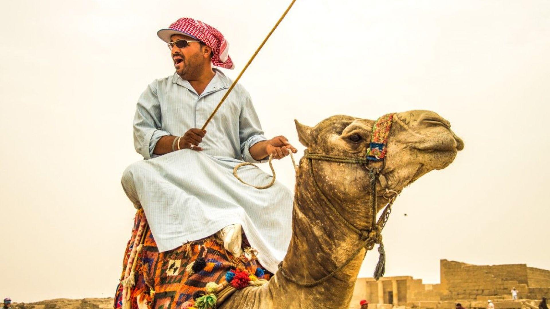 Египет: Край на язденето на камили при пирамидите